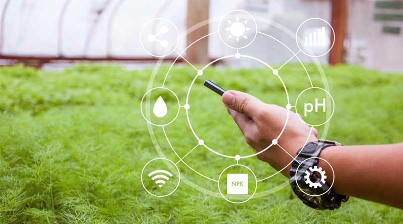 innovazione giardinaggio